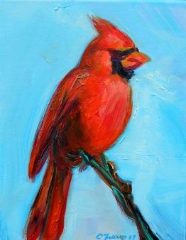 Cardinal-8x10